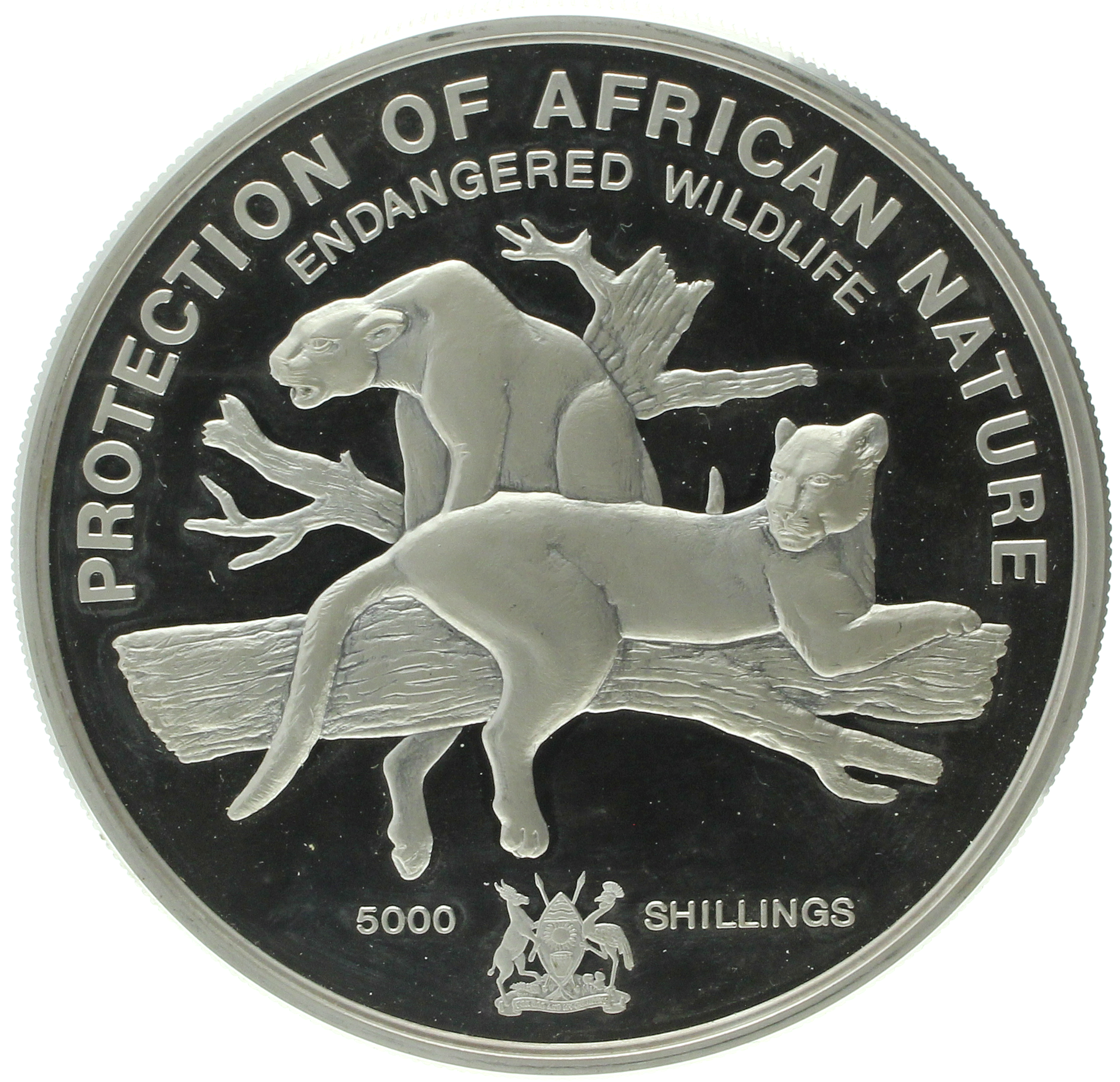 Uganda - 5000 shillings - 1993 - Protection of African Nature